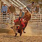 Rodeo Cowboy Riding a Bull by Buckwhite