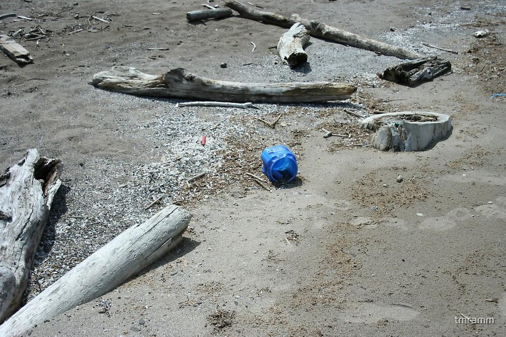 Crane Creek Trashed by tmramm