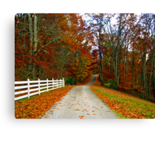 *COUNTRY ROAD* Canvas Print