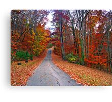 *MY FAVORITE COUNTRY ROAD* Canvas Print