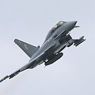Eurofighter Typhoon T2 by PhilEAF92