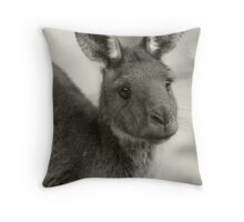 Kangaroo at Warrawong Sanctuary South Australia Throw Pillow