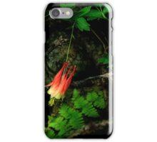 Shaded Treasure iPhone Case/Skin