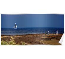 Sailing Port Phillip Bay Poster