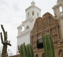 San Xavier del Bac by Michael Cohen