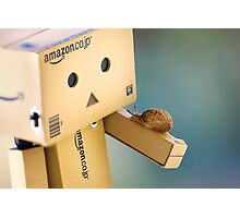 when Danbo meet Gary Photographic Print
