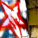 Red Star by sonjas