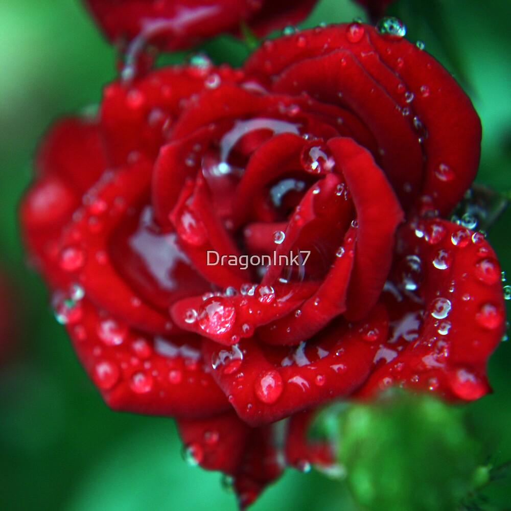 Romance by DragonInk7