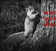 Home Sweet Home Squirrel by Doreen Erhardt