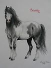 Brumby (For Rosemaree) by louisegreen