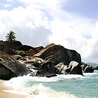 Virgin Gorda's Baths Beach by DARRIN ALDRIDGE