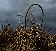 Entangled in Chaos by trentspot