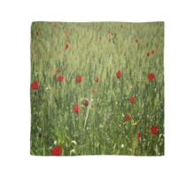 Red Poppies Growing In A Corn Field  Scarf