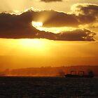 Sunset in Durban by Slavi Barnev