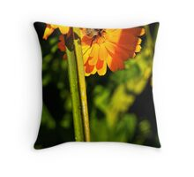 Daisybee Throw Pillow
