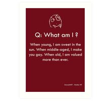 Riddle #9 Art Print