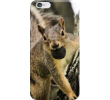 The Playful Squirrel iPhone Case/Skin
