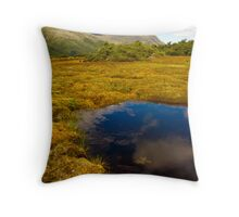 Key Summit on Routeburn Track Throw Pillow