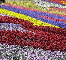Swirling Flowers by cebrfa