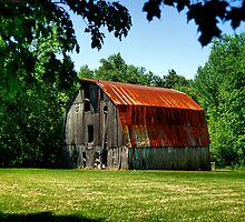 Bucolic Beauty by Lois  Bryan