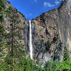 Bridalveil Fall  by Shaina Lunde