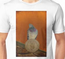 Autumn in Japan:  Protector of the Temple T-Shirt