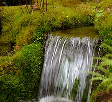 Moss Waterfall by EileenFrith