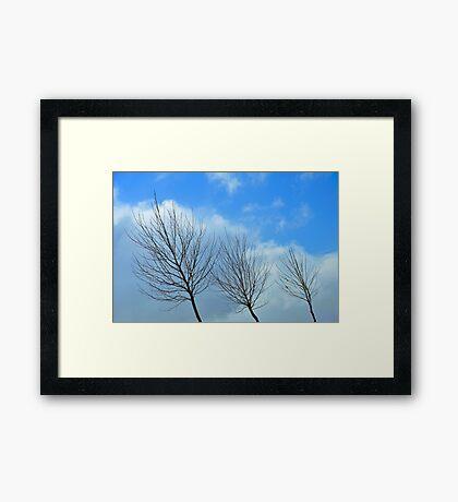 reaching #4 Framed Print
