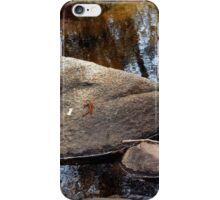 Stuff on Rocks iPhone Case/Skin