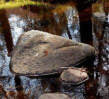 Stuff on Rocks by Chris Gudger