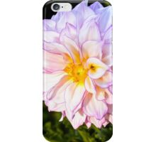 A Nice Pink Dahlia iPhone Case/Skin
