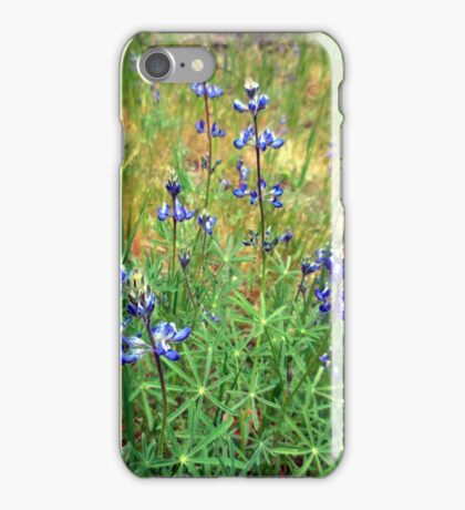 Dwarf Lupines iPhone Case/Skin