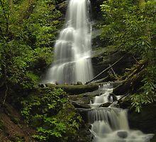 Silverspray Falls by Stephen Vecchiotti