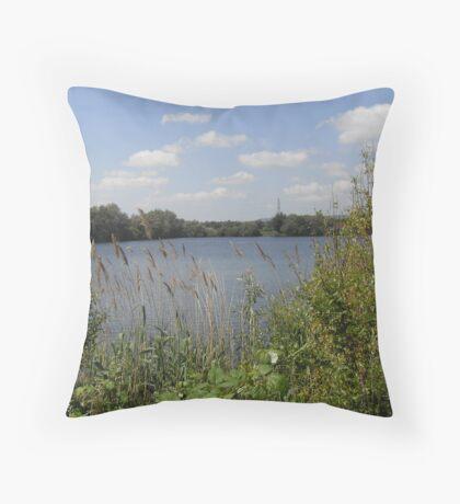 Lakes. Throw Pillow