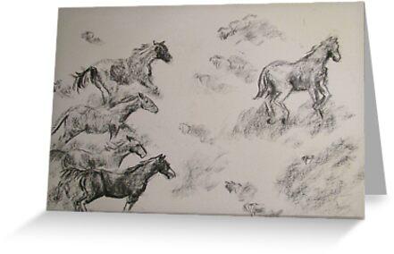 Horses running Free by Jayde Nossiter