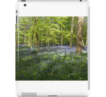 Bluebells Coxsetter's wood   iPad Case/Skin