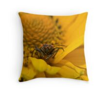 box elder bug on yellow Throw Pillow