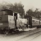 Thomas 1049 The Zig Zag Railway by DavidIori