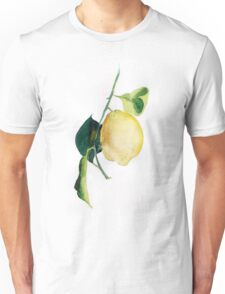 Branch of  lemons with leaves Unisex T-Shirt