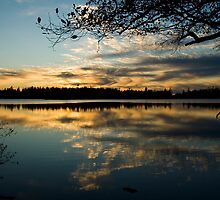 Cranberry lake sunset fine art photography by yuliart