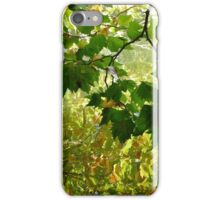 Maple tree reflection iPhone Case/Skin