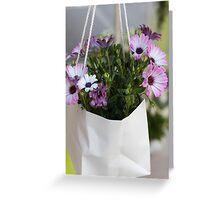 dimorfoteca flower in the basket Greeting Card
