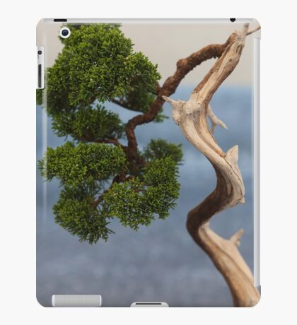 bonsai in the garden iPad Case/Skin