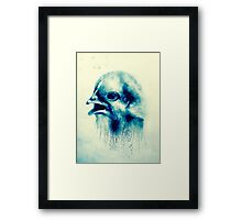 Bird on a london wall Framed Print