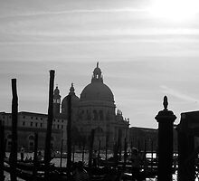 Venice by Boat by Rubicon