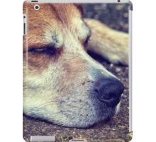 Let Sleeping Dogs Lie iPad Case/Skin