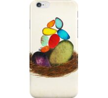 My Colorful Bird Babies iPhone Case/Skin