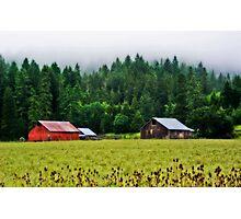 Three Barns Photographic Print