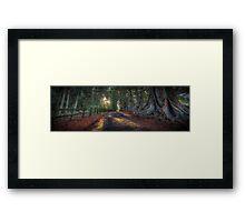 Mystical Woods Framed Print