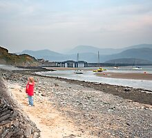 Barmouth Bridge by pixelda